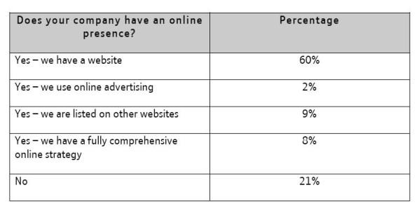Small Business Web Strategy