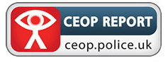The CEOP logo is causing a major row over cyberbullying