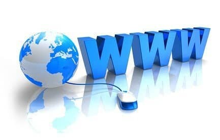 Web Success for CEOs