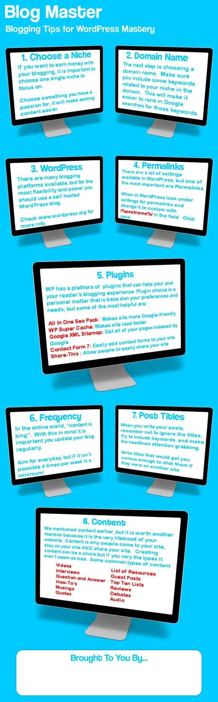 Blog Master Infographic
