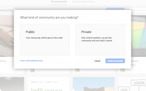 Screenshot of Google+ Community
