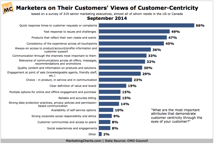 Graph showing what makes a company customer centric
