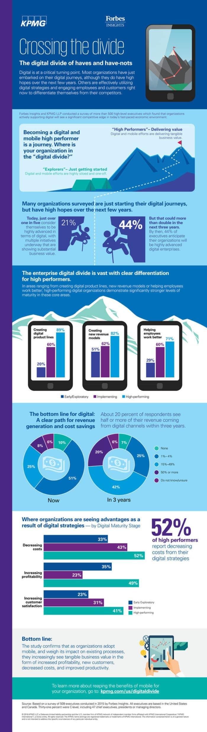 Digital Divide Infographic