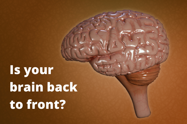 Is your brain back to front (Image heading)